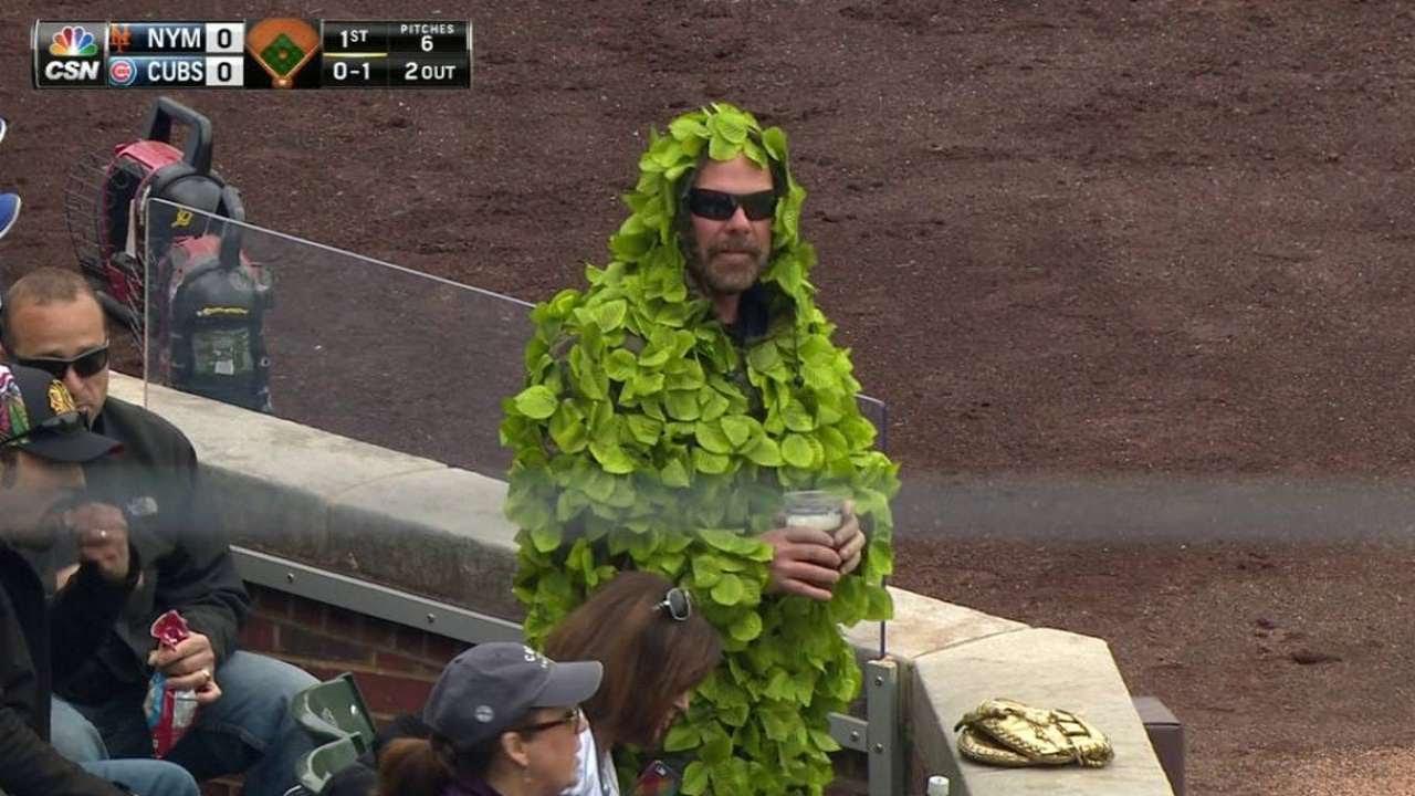 Cubs fan wears a Wrigley Field ivy outfit