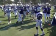 Massive brawl erupts between the Dallas Cowboys & St. Louis Rams