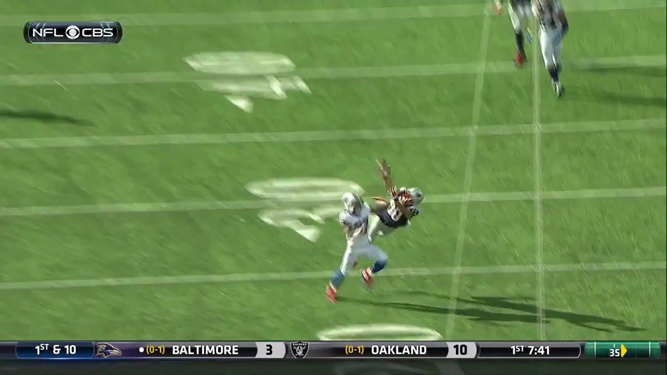 Patriots WR Danny Amendola makes a spectacular catch