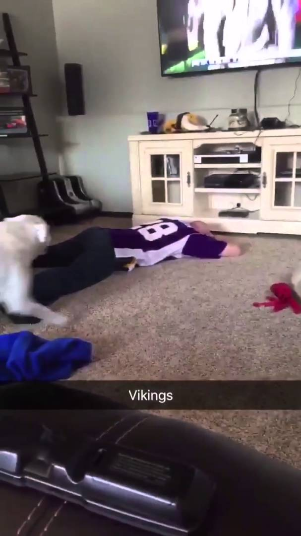 Vikings fan with priceless reaction to Blair Walsh missed field goal