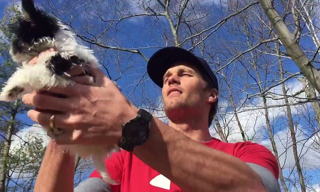 Tom Brady reenacts Lion King scene with his new puppy