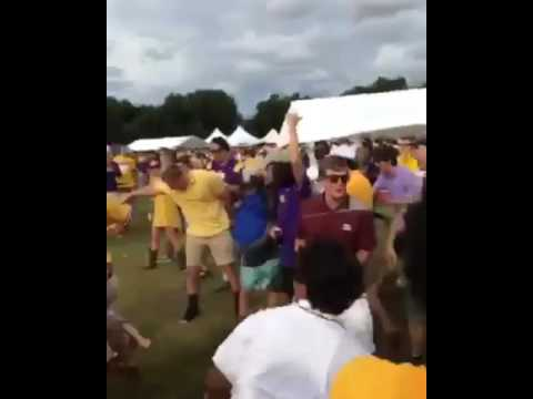 LSU fan knocksout another LSU fan in brawl