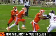 Clemson WR Mike Williams bullies South Carolina defenders for a touchdown