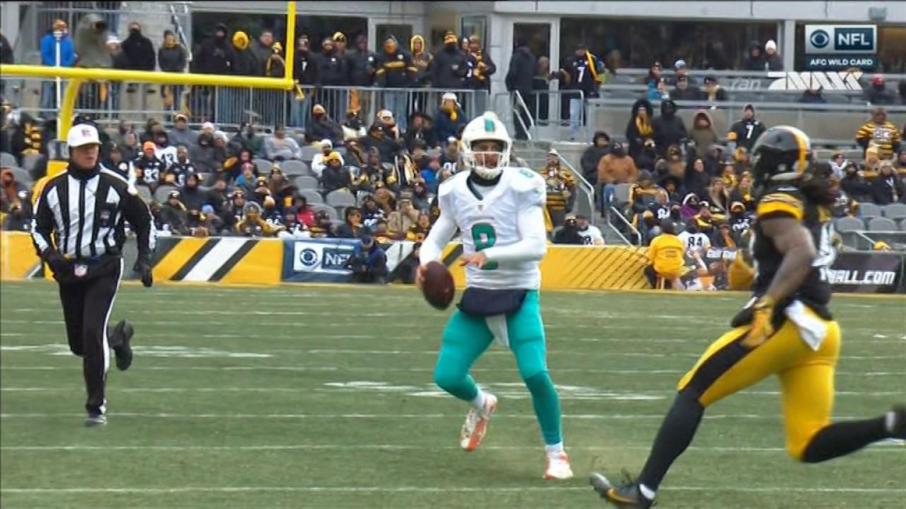 Pittsburgh's Bud Dupree destroys Dolphins QB Matt Moore