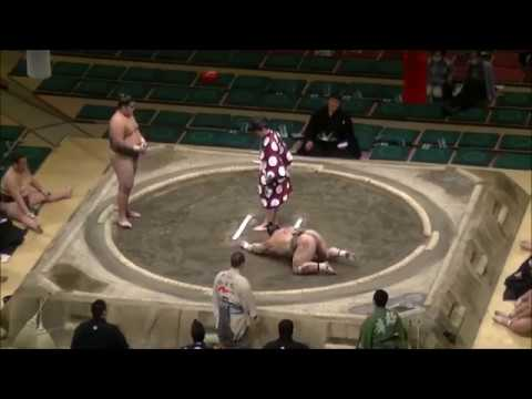 Sumo wrestler in Japan lands brutal UFC-style Knockout
