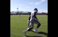 Oakland Raiders WR Brice Butler makes a sweet one handed grab