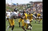 Steelers WR Martavis Bryant makes sweet grab despite being held