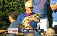Joe Madden populates Wrigley Field with the zoo