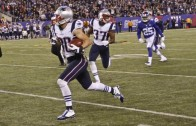 Danny Amendola misses sure touchdown after being tripped up by teammate