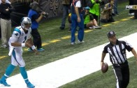 Ref tries to stop Cam Newton from giving TD ball to a fan