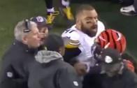Steelers coach grabs Bengals' Reggie Nelson by the dreadlocks