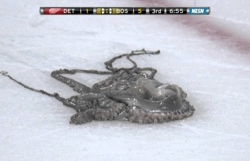 Red Wings fans throw octopus on the ice in Boston