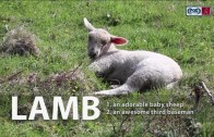 Diamondbacks release clever All-Star ad for Jake Lamb