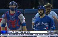 Toronto Blue Jays fans have playoff fever