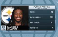 DeAngelo Williams speaks on the Steelers season & NFL player safety