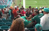 Miami Dolphins & San Francisco 49ers fans brawl in the stands