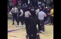 LSU fan knocksout another LSU fan in brawl
