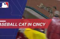 Bartolo Colon Makes History With 244th Career Win