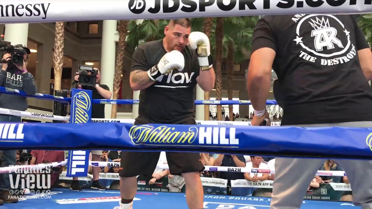 Andy Ruiz Shows Off Power & Combinations for Anthony Joshua Fight (Public New York Workout)